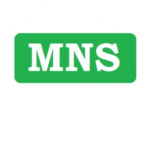 cropped-Logo-MNS.png